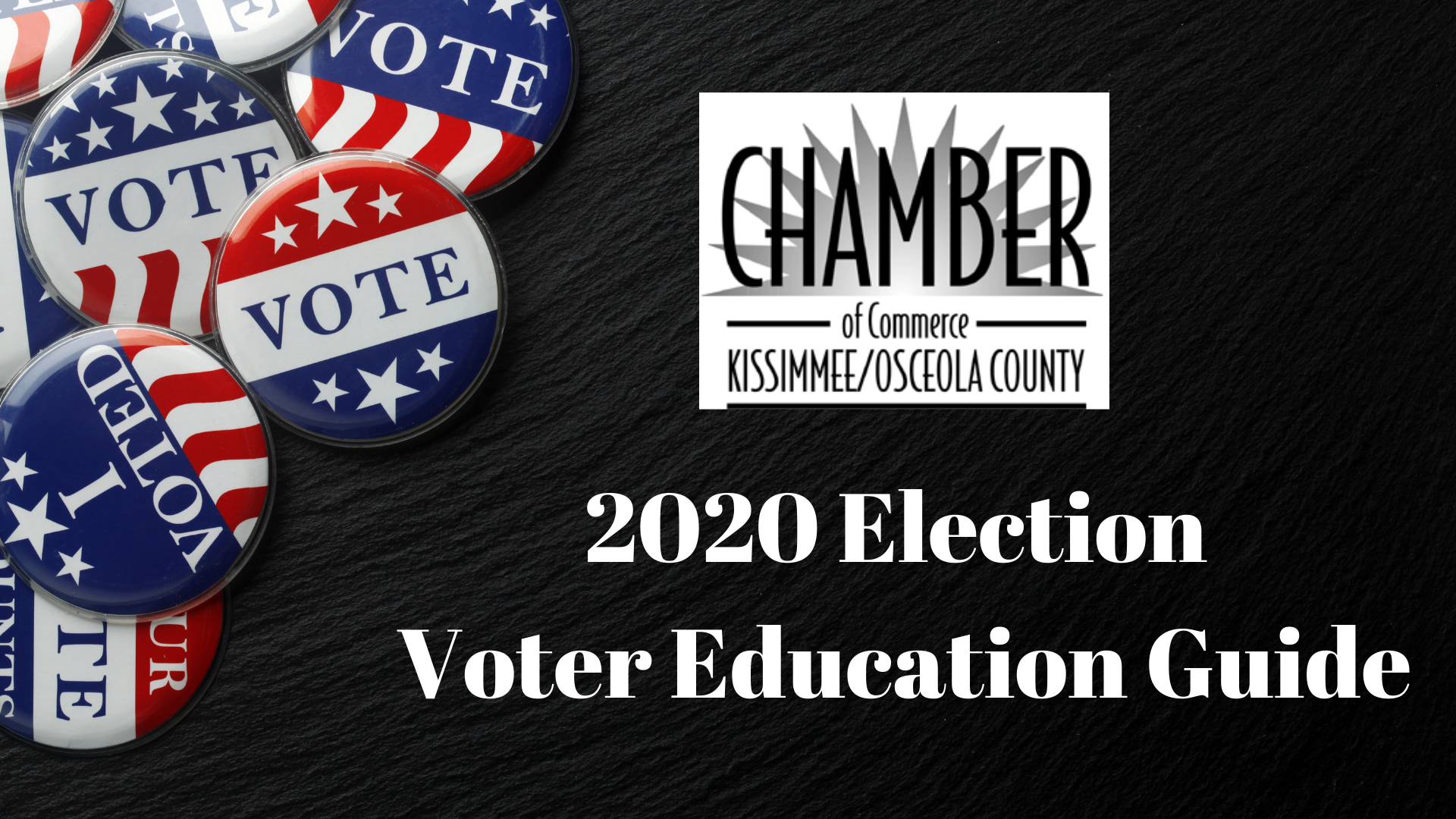 2020 Election Voter Education Guide